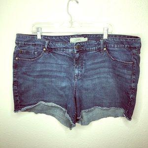 Torrid Raw Hem Shorts - Size 24